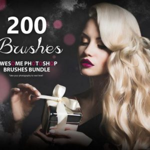 200 Awesome Photoshop Brushes Bundle